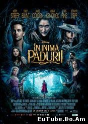 Into The Woods (2015) Online Subtitrat
